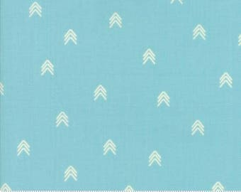 INSTOCK Creekside Compass Spray 37536 14 by Sherri and Chelsi from Moda -1 yard