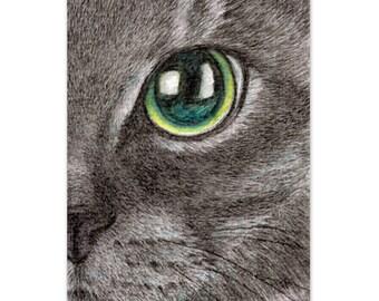 lifelike/realistic cat drawing, watercolor pencil, the face of a black cat art print, cat lover gift, cat art print, A4 print 8x10 print 6x8