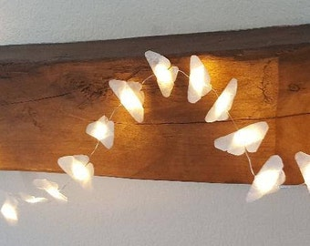 string light small butterflies
