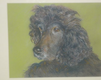 Original fine art.  Commission your own pet painting - JAKE - pastel portrait of a very special dog.