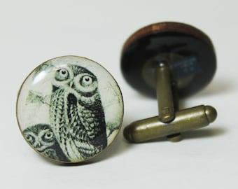 Barred Owl Cufflinks | vintage illustration birds animals nature wood cufflinks personalized gifts cuff links outdoors gift under 40 men