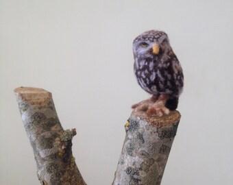 Needle Felted Miniature British Little Owl