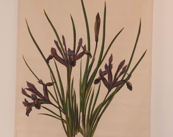 Fabric wall hanging of Iris flowers