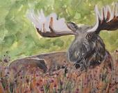 Maine Moose Original Wate...