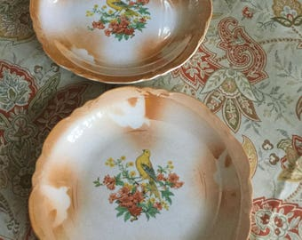 Beautiful Old Thompson Pottery Company Orange Lustreware Yellow Goldfinch and Orange Flowers Dinner Plates