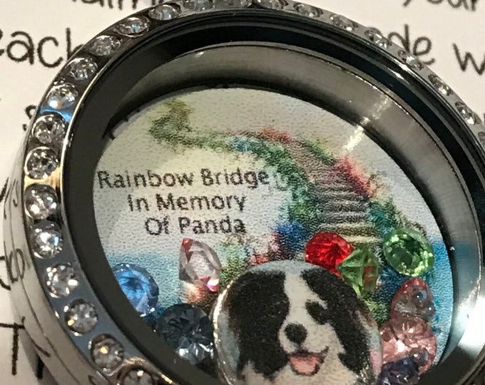 Rainbow bridge pet loss Memorial floating locket with picture stainless steel