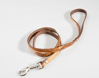 Dog or Cat Leash 1