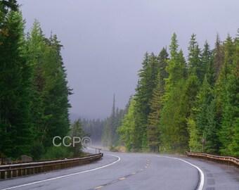 Mountain Road Photography, Mount Hood, Oregon Decor, Wall Art, Landscape Photo, Art Print, Nature Decor, Tree Print, Rainy Day, Powder Room