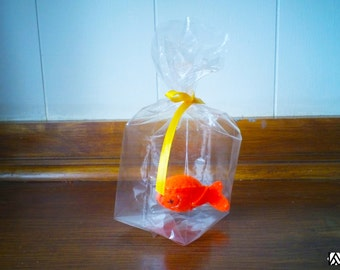 Orange Belly up fish - The Ultimate Pet, Fish in a bag, vegan.