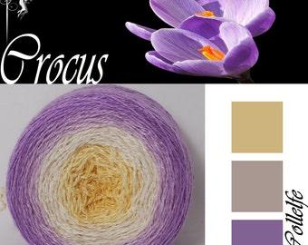 Crocus* Merino silk Gradient Yarn hand dyed - Lace weight