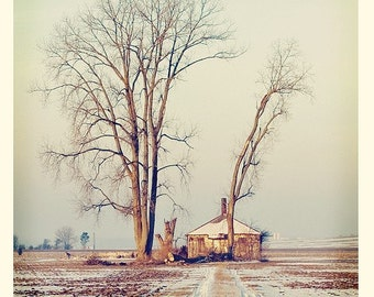 Renewal Square Fine Art Print Signed--Snowy Landscape Trees Sky Winter Lonely Peaceful Apartment Home Decor Wholesale