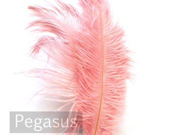 ROSE Pink Ostrich Feather Drab (6-8 inches, 3 package option) feather for hat,fascinator,hat,corset,dresses,bouquets, costume,fans