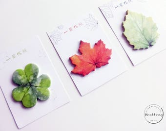 Sticky notes Autumn Leaves foliage nature