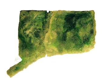 Connecticut Topography Print