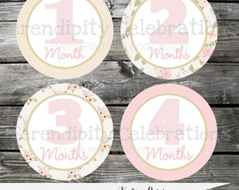 DIY Printable Baby Monthly Stickers, Instant Download Baby Milestone Stickers -Pink Peach Flowers -Photo Prop -Gift -Baby Shower -Just Born
