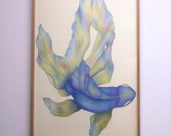 China Blue veil (pencils)