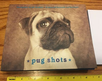 Pug Shots blank greeting cards