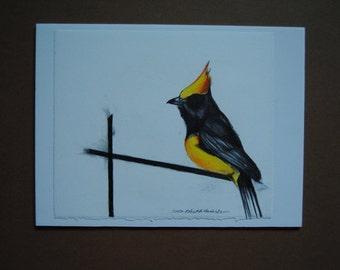 Yellow Bird Drawing