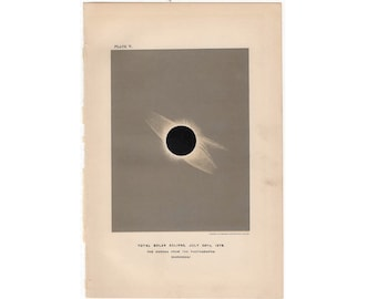 c. 1891 TOTAL SOLAR ECLIPSE print - original antique astronomy lithograph - the corona from a photograph - the sun - total eclipse