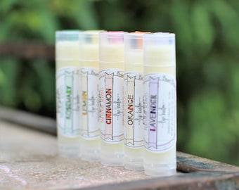 Alle natürliche Lippenbalsam / / feuchtigkeitsspendende, Pflegende Chapstick, natürlichen, pflanzlichen Lippe butter