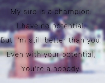 "Horse Poem Including Digital Art, ""My sire is a champion. I have no potentional, But I'm still better than you. Even with your potential..."""