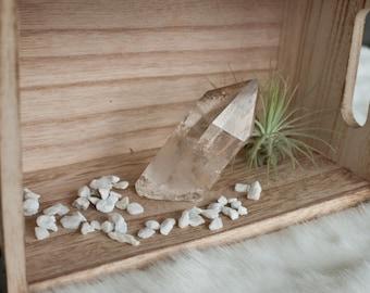 Lemurian Seed Water-Clear Quartz Point - 6.4cm x 4.5cm - ITEM #5