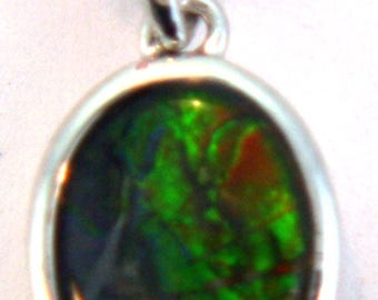 Simple  Oval Shaped  Canadian Ammolite Pendant set in  Sterling Silver.