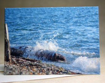 Seed Paper Beach Print Recycled Cotton Blank Notecard Set - Northwest Photography