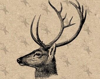 Vintage image Deer Head Reindeer Instant Download Digital printable retro picture clipart graphic fabric transfer burlap art print HQ 300dpi