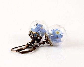 Genuine forget-me-nots flower earrings E055