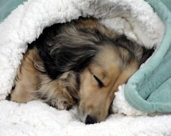 "Wake me when Santa gets here  - Aqua Minky Snuggle Sack - Dog Bed -  Includes Embroidered Personalization - 20"" x 24"""