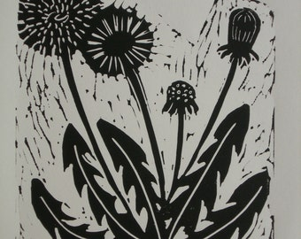 Limited Edition, Hand Printed Lino, of a Dandelion flower, 2014.