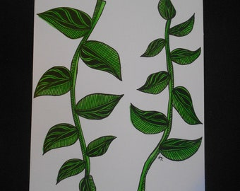 Hand drawn Vines card and envelope
