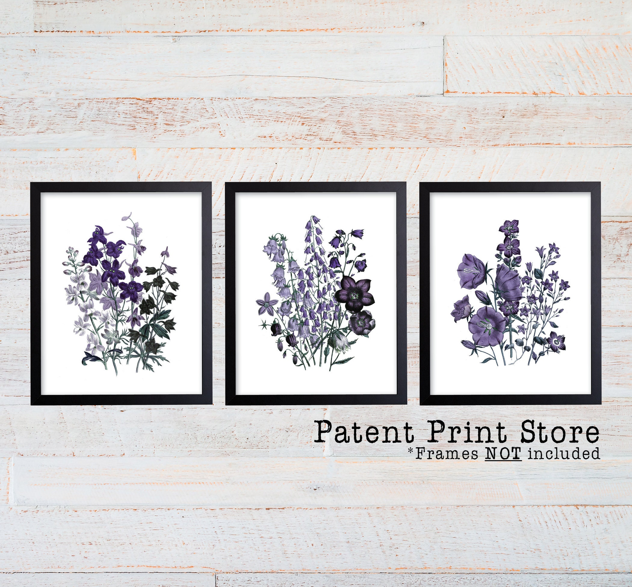 Purple Botanical Art Prints. Purple Flower Prints. Flower Wall Art ...