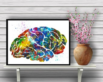 Colorful Human Brain, Biology, Watercolor Room Decor, Science, Anatomy, Wall Hanging, Home Decoration, gift, print (360)