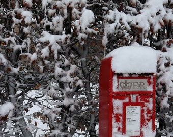 Postie in the snow
