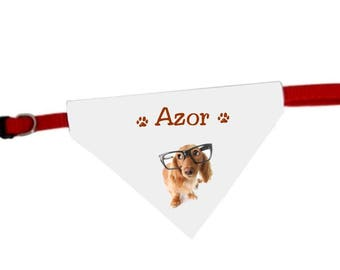 Collar bandana for dog humor personalized with name