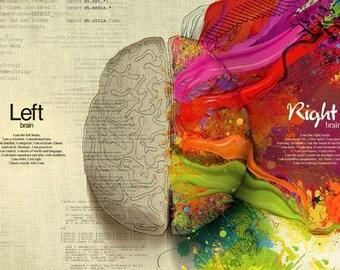 Art Print Human Brain Logic V Creativity Print