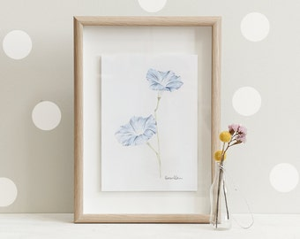 Botanical Print Of A Morning Glory   Limited Edition of 20 Giclee Art Prints