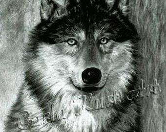 Wolf Art ALPHA Original Artwork by Carla Kurt