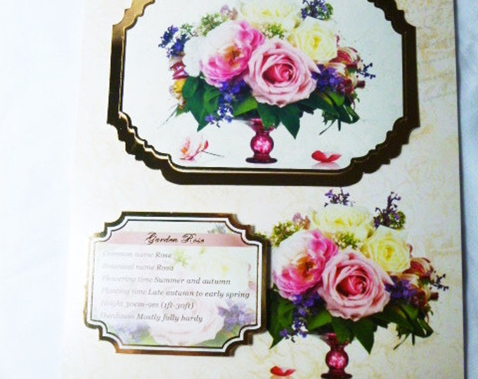 English Roses, Birthday Card, Garden Rose, Greeting Card, Female,  Any Age, Mum, Daughter, Sister, Niece, Floral, Flowers, Cream  and Gold,