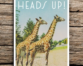 Heads Up! Giraffes Postcard Save the Date // Pair Animals Zoo Save the Dates Fun Deco Love Blue Antique Vintage Cards Digital File Whimsical