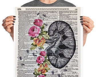 Anatomical Kidney, 16x20 Matte Paper Poster, Human Kidney, Kidney With Flower, Floral Kidney, Floral Anatomical,Human Body Print,Nephrology