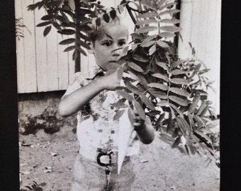 Original Vintage Photograph | Little Landscaper