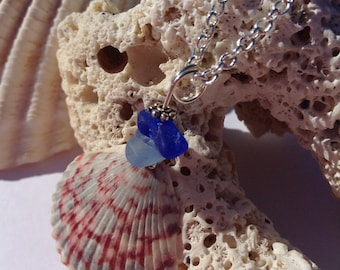 Florida Seashell and California Sea Glass Necklace, Authentic Sea Glass, Blue Sea Glass
