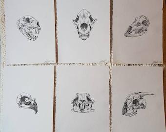 ORIGINAL 6x A5 skull stippling artworks