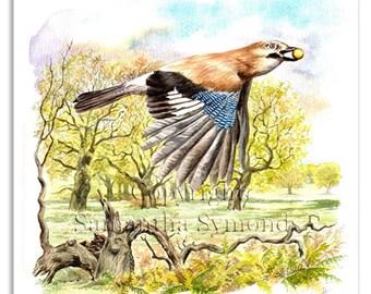 Jay bird card, watercolour, digitally printed