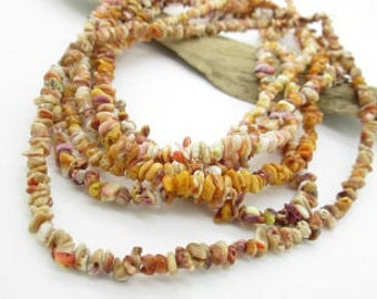 "Spiny Oyster Shell Nugget Beads, Small Nugget Beads, Small Shell Beads, Orange Shell Bead, 4x4-6x5mm (1 16"" strand)"