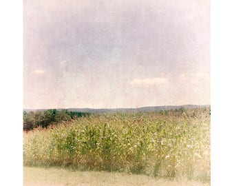 Cornfield Landscape Photography, Lomography, Holga Print, Farmhouse Decor, Rustic Decor