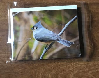Bird Note Cards, Tufted Titmouse note cards, single-sided blank note card, greeting cards, post cards, 8 photographic note cards, stationery